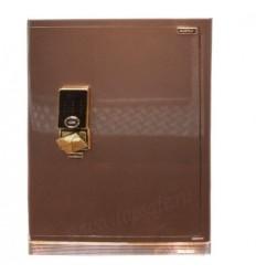Сейф Aipu Platinum LUX FDG-A1/D-95BZW